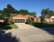 9106 Calle Alta, New Port Richey image
