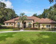 12912 Water Point Boulevard, Windermere image
