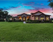4519 Claire Rose Court, Mount Dora image