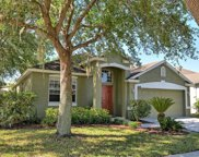 9692 Pacific Pines Court, Orlando image