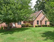 483 Casey Lane, Strawberry Plains image