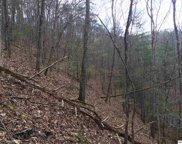 Lot 175 Black Bear Cub Way, Sevierville image