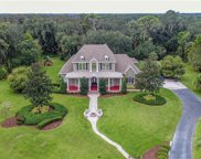12725 Mannhurst Oak Lane, Lithia image