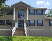 12808 Twin Branch Acres Road, Tampa image
