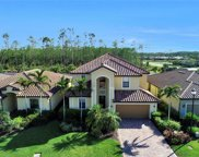 20218 Black Tree Ln, Estero image