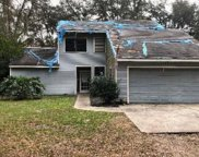 31420 Wekiva River Road, Sorrento image
