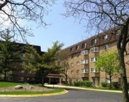 300 South Roselle Road Unit 419, Schaumburg image