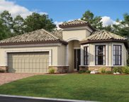 20155 Umbria Hill Drive, Tampa image