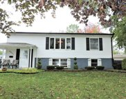 8901 Golfview Drive, Orland Park image
