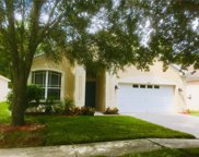 15924 Stags Leap Drive, Lutz image