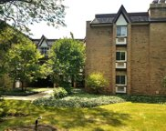 360 Claymoor Street Unit 2F, Hinsdale image