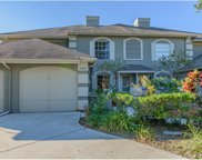 14004 Notreville Way, Tampa image