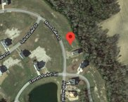 607 Moss Lake Lane, Holly Ridge image
