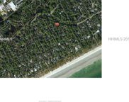 8 Canvasback Road, Hilton Head Island image