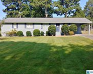 5201 Lee Rd, Pell City image