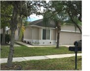 18109 Canal Pointe Street, Tampa image