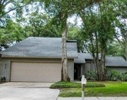 3018 Tall Pine Drive, Safety Harbor image