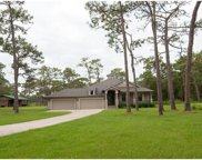 15610 Phillips Road, Odessa image