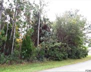 44 Luther Dr, Palm Coast image