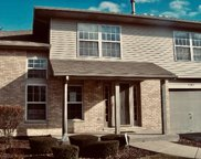 9398 Meadowview Drive, Orland Hills image
