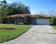 2390 PERTH DR, Orange Park image