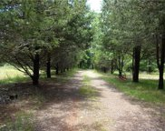 1497 Sandy Plains  Road, Tryon image