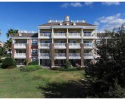 1116 Sunset View Circle Unit 102, Reunion image