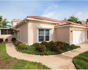 103 Palm Frond Ct, Naples image
