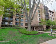 3741 Mission Hills Road Unit 407, Northbrook image