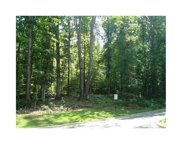 00 Hickory Road, Holly Springs image