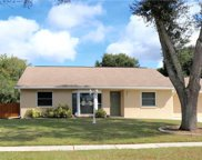 1618 Featherband Drive, Valrico image