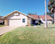 13 Coral Reef Ct N, Palm Coast image