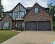 5304 Letson Farms Cove, Bessemer image