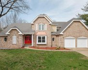 402 Bluff Meadow Ct, Ellisville image