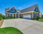 1116 Glossy Ibis Drive, Conway image