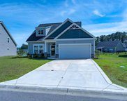 231 Palmetto Green Dr., Longs image