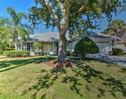 12731 Meadow Pine LN, Fort Myers image