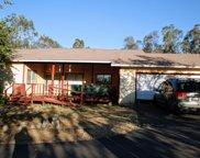 34803  State Highway 16, Woodland image
