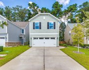 8920 Cat Tail Pond Road, Summerville image