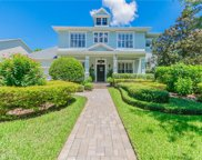 14661 Canopy Drive, Tampa image