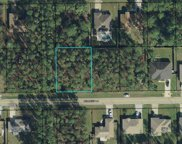 14 Reindeer Lane, Palm Coast image