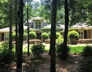166 Willow Lake Drive, Fairhope image