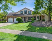 371 Satinwood Terrace, Buffalo Grove image