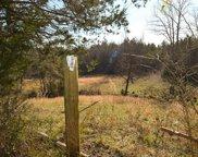 32 Acres No Pone Valley, Georgetown image