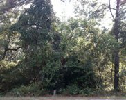 TBD Nailah Ln., Pawleys Island image