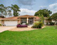 217 Wellington Drive, Palm Coast image