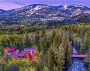 33550 Rushing Water Lane, Steamboat Springs image