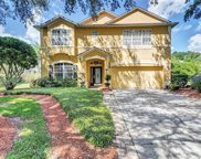 1809 Silver Valley Court, Apopka image