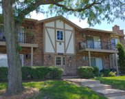 9S220 South Frontage Road Unit 202, Willowbrook image