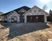 3505 Crystal Ann Drive, Temple image